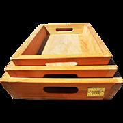 Vintage 3 Piece Arbora Teak Nesting Service Tray Set