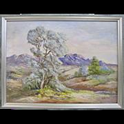 Marian Letton Early California Plein Air Desert Smoke Bush Oil Painting