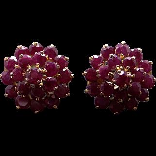 14k Yellow Gold 6ct Round Cut Ruby Cluster Stud Flower Earrings Omega Backs