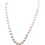 Beautiful 14k Yellow Gold 6.5mm Cultured Akoya Pearl Strand Necklace 18 inch