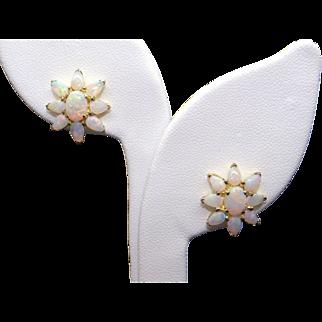 Beautiful 9k Yellow Gold 3ct Multi Color Opal Flower Leaf Cluster Stud Earrings