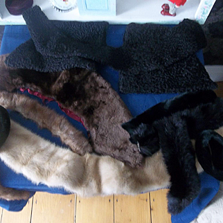 A Lot of Real Furs, Black Curly Lamb and Faux Furs( All Vintage)