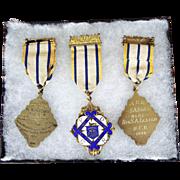 Vintage Sterling Silver Temperance Order of Rechabites IOR Medals
