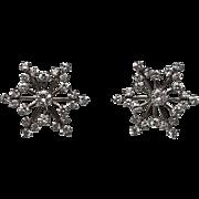 Platinum Diamond Snowflake Cluster Earrings