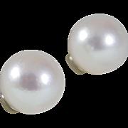 Chic 14k White Gold 8.5 mm AA Akoya Pearls Earrings