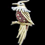 Marcel Boucher Bird Brooch from 1955