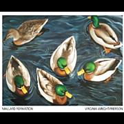 20th Century Artist: Virginia Wright-Frierson, Oil on Canvas: Mallard Formation