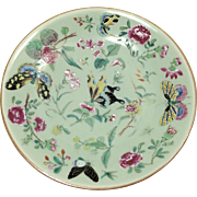 Qing Dynasty Porcelain Plate with Butterflies, Signed by Artist