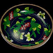 Chinese Export (c. 1897-1921) Cloisonné Pin Dish