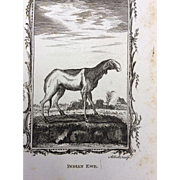 Goat Engraving --- 19th Century Bookplate