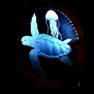 Sand Carved Glass: Loggerhead Turtle by Lex Melfi