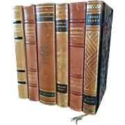 A set of 6 antique leather bound decorative books.