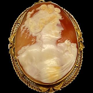 Yellow Gold Large Cameo Pin/Pendant