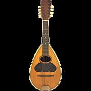 Antique 8 String Bowlback Mandolin Lion Brand No Case