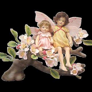 R John Wright The Apple Blossom Fairies™