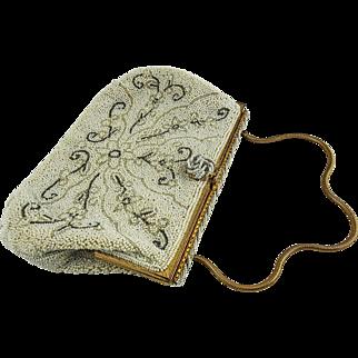 French White Cavier Beaded Purse, Evening Bag, Jorelle — Handmade Floral Design — 1920s