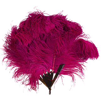 Rare 1920s Fuchsia Ostrich Feather & Celluloid Hand Fan