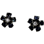 Sapphire and Diamond Earrings, Two Toned, 14Kt