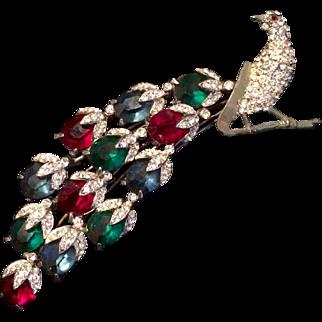 Spectacular Peacock Pin