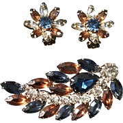 Pretty Weiss Brooch and Earring Set