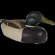 Male Mallard Duck Wood Decoy