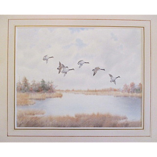 J D Knap b1875, important early wildlife artist, image size 12 x 15, nice mat and frame.