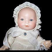 "Amberg German Baby 8"""