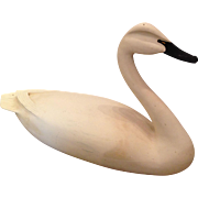 Chip Allsopp Hand Carved Whistling Swan Decoy
