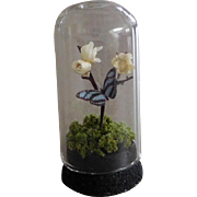 Artist OOAK Dollhouse Miniature Glass Butterfly Dome Curio 1:12