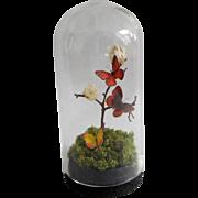 Artist OOAK Dollhouse Miniature Glass Triple Butterfly Dome Curio 1:12