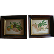 Antique Pair Victorian Floral Lithographs in Deep Shadow Box Wood Frames Giant Christmas Rose & Bouquet Dahlias