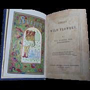 Scarce 1845 Poetry Book Scottish Poems William D'Leina Spring Wildflowers Rare