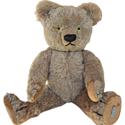 Rare Chad Valley alpaca plush teddy bear with labels, 1930s