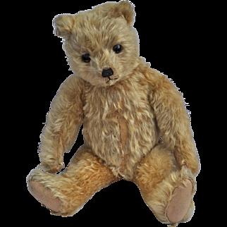 A beautiful J. K. Farnell teddy bear 1920s,