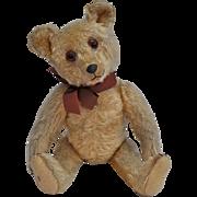 Rare and stunning Jopi teddy bear, 1930s
