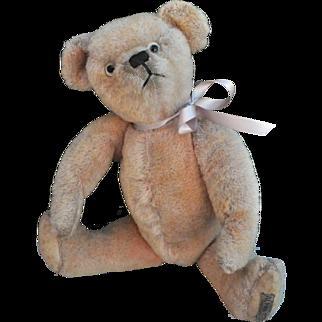 Rare Alpha Farnell pink wool plush teddy bear 1930s