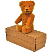 Very rare Schuco scent bottle teddy bear in original box, 1920s