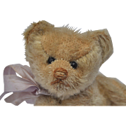 A sweet small size Steiff teddy bear circa 1909