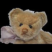 A sweet small size Steiff teddy bear circa 1909