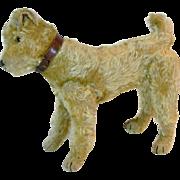 Steiff Irish terrier circa 1911-1920