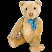Cramer Teddy Bear - circa 1920's