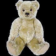 Farnell Teddy Bear circa 1920's, superb condition