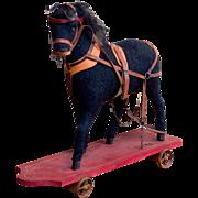 German horse on wheels c.1910