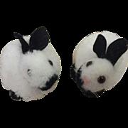 2 Steiff pom pom rabbits