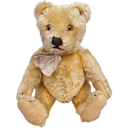 Adorable 1950's Steiff Bear