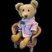 Adorable little American Stick Bear