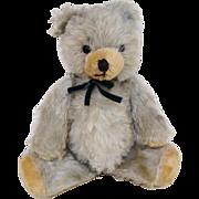 A Sweet Vintage Blue Mohair Bear