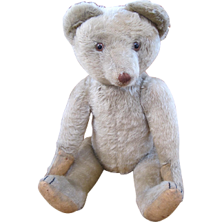 Very Rare Musical Cramer teddy bear