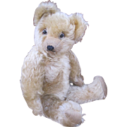 Teddy Toy Company bear 1930's