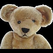 Large Ideal Antique Teddy Bear